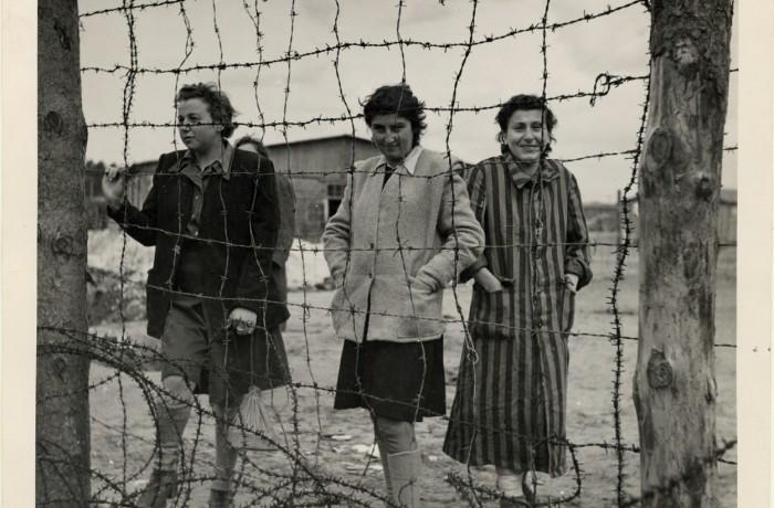 Et en 1948, je suis arrivé au Canada – L'Holocauste en six dates